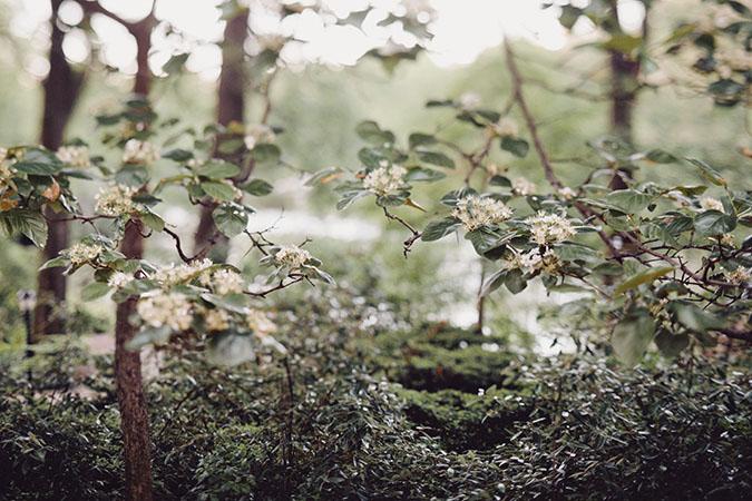 Central-park-ciro-photography005