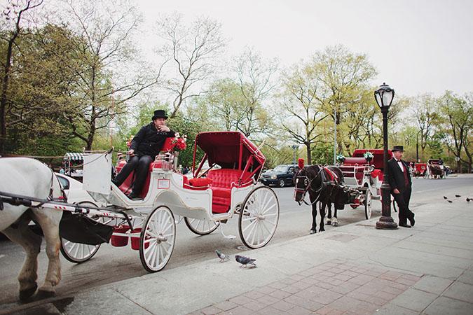Central-park-engagement002