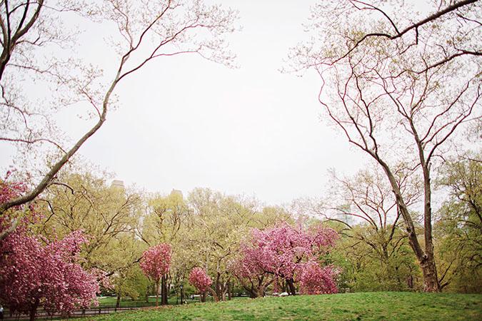 Central-park-engagement014